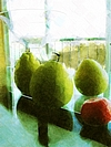 Three Pomelos and a Glass Vase-005-s.jpg